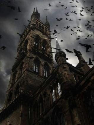 University Ravens