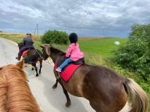 horses - riding